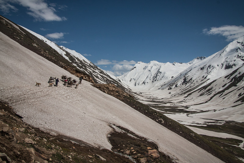 A few nomad families passed us heading up the valley, on their two-month trek to summer pastures