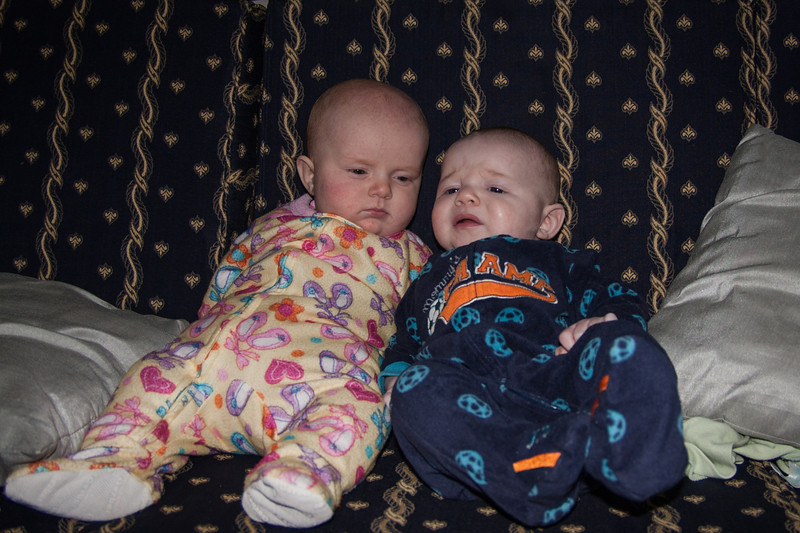 Sienna (left) with a new friend. I forget his name, but he's just two weeks younger than her.