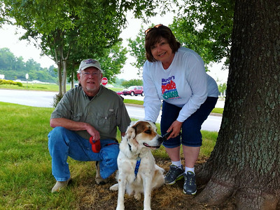 4/21 - Today, Frank and I joined with a group of strangers connected through an internet group to get this rescue dog, Dez, from his foster home in Kennesaw to his forever home in New York.  Dez is a very sweet 3-year old English Setter-St. Bernard mix.  Here he is with Pam and Bill, the couple we handed him off to in Chattanooga. This was our first experience with rescue transport chains, but we will definitely do it again. More pics here: