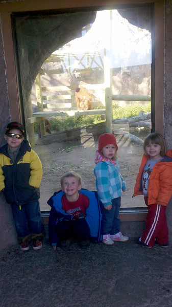 With Emre and Norah at the ABQ zoo spring of 2012