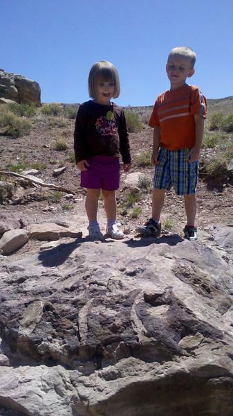 Dinosaur fossils (look carefully) outside of Fruita, CO
