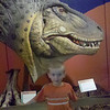 Dinosaur museum in Fruita, Colorado on our dinosaur adventure 5/12