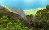 canyon merg1