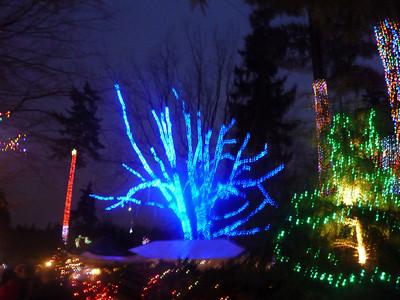 2012 12 23-Christmas Train 009