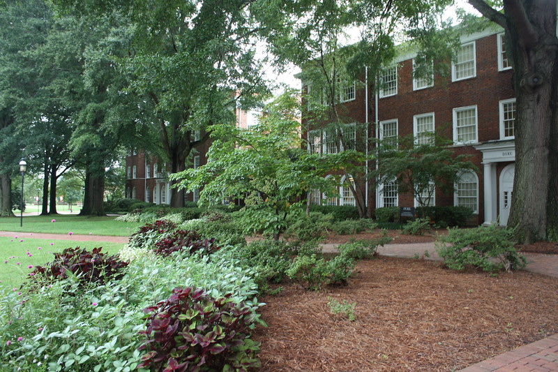 Some of the academic buildings