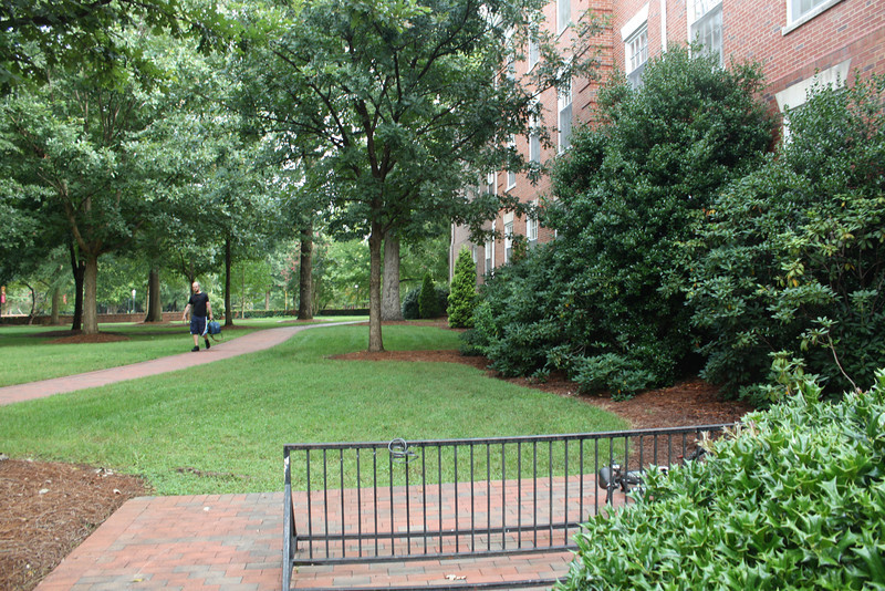 One of the walkways through campus