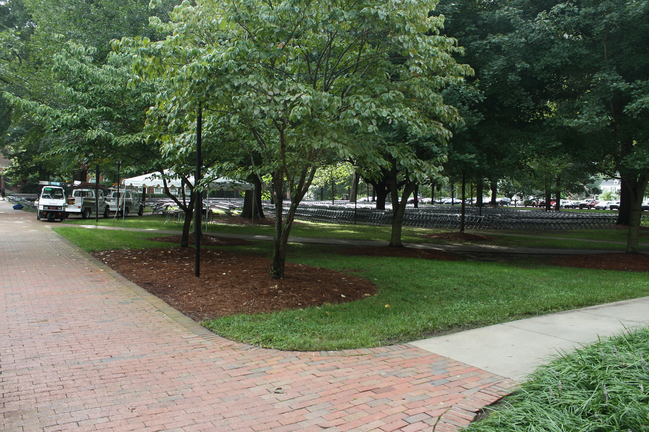 """Setting up for freshman convocation """"under the oaks"""""""
