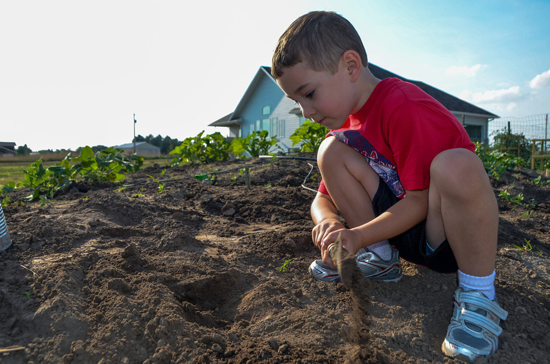 BRAYDEN, SON OF ZEB'S BROTHER - BRYCE IS DIGGING OUT A BED FOR NEW GOURDS
