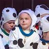 Dalmatians-45
