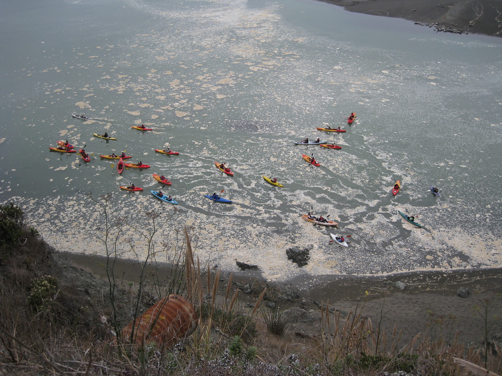 Kayakers learning the ropes.  The white stuff on the water is some kind of foam churned up by the waves in the ocean.