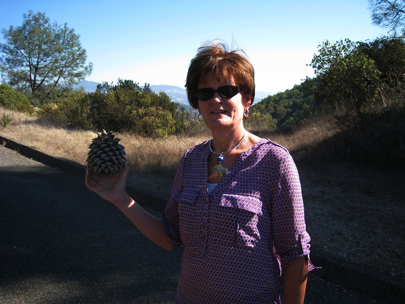 Jan found a big pine cone on our hike up to the Sonoma Lake overlook.