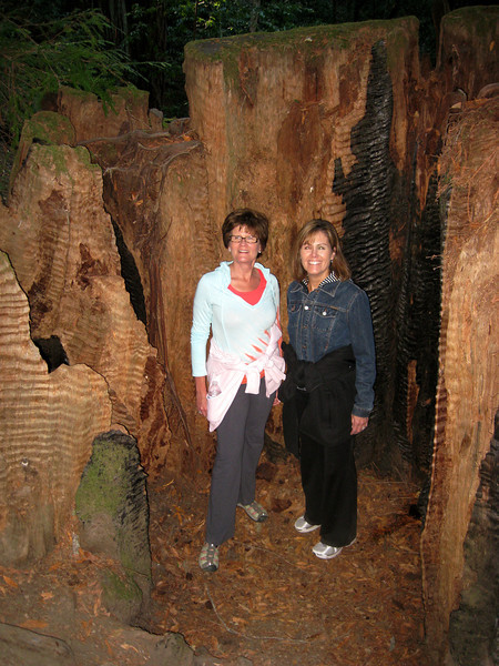 Jan and Sheila in the trunk of a long-dead redwood.
