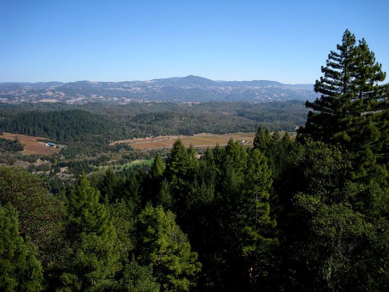 View east towards Alexander Valley.