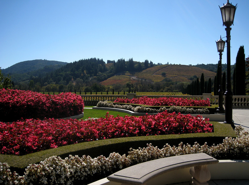 A portion of the meticulously manicured outdoor gardens at Ferrari-Carano.