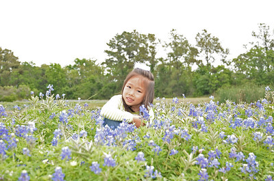 April 21, 2013 - Bluebonnet Patch in League City