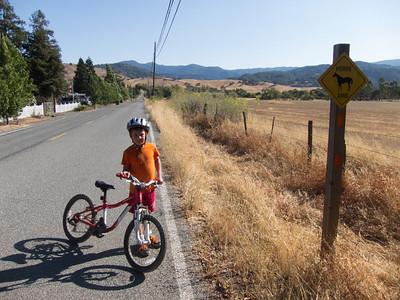 Biking With Matthew 2013