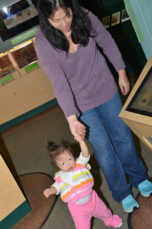 January 19, 2013 - Butterfly Museum