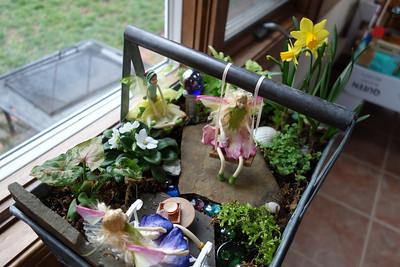 Fairy Habitat March 2013