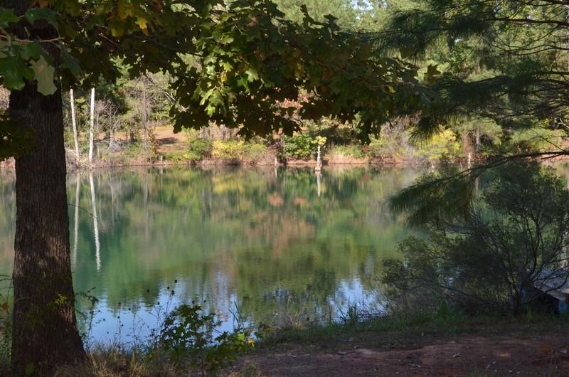 2014-10-19-Edom-Festival-Wood-Cabins 143Bestof2014