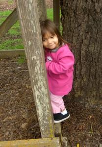 Catory climbing Ladder