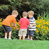 2nd cousins - Matthew, Hudson, Bryan, looking at Doug's flowers, Mooresville, NC, 7/25/2014