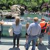 Central Park Zoo, Claudia, Ryan, 6/7/2014