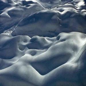 February Backyard Snow