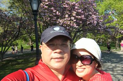 Through Central Park