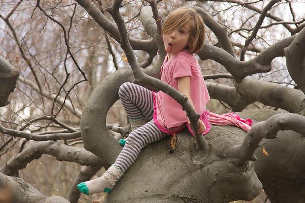 2014 05 Cobb visit & Tree