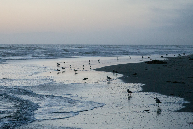 After Sunset Pajaro Dunes
