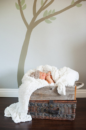 20140113-newborn-6