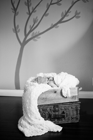 20140113-newborn-25