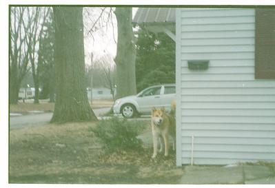 Hunter's Photos