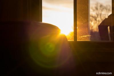 Sun Burst 0199