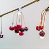 1/3 - Frozen Berries