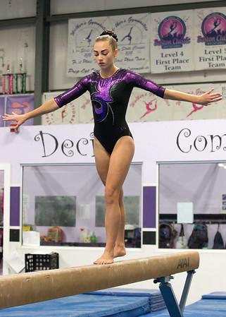 Scarlett Gymnastics - November 15, 2015