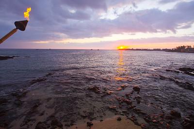 Hawaii_chocolate_turtle1415