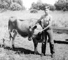 Jim & cows