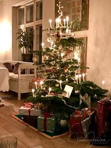 2016-12-24 Christmas