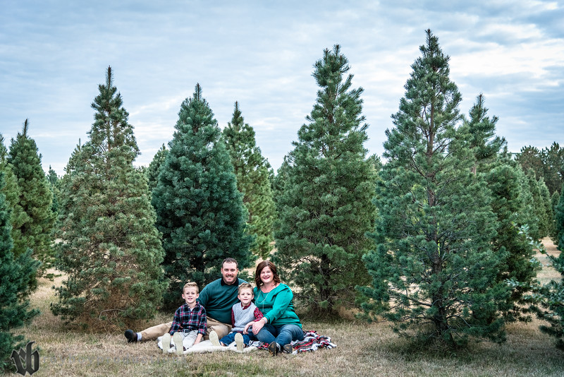 2016 Cole Family Christmas Card_061