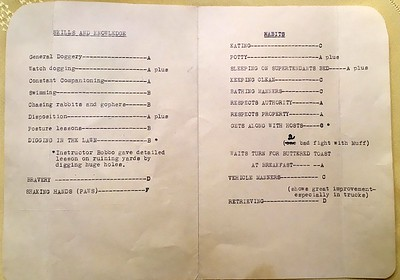 Inside of Progress Report for Daffadil Hill (Daffy the beagle) from Majel's Muttery - July 1970