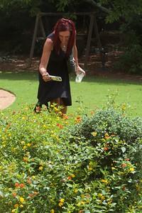 Rachel photographing the butterflies around the lantana