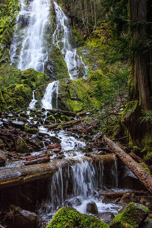 Adventures 2017 -  Christmas in Oregon