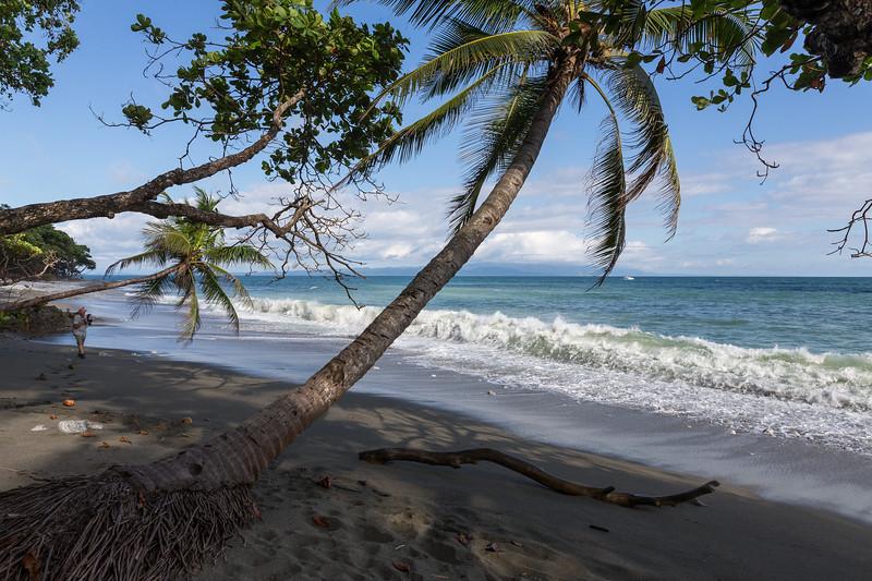 Beach on the Osa Peninsula