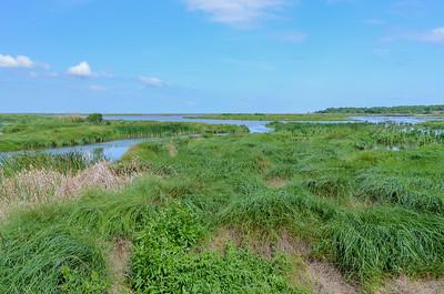 Bayou Savage National Wildlife Refuge
