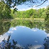 4/21 - Sibley Pond in April