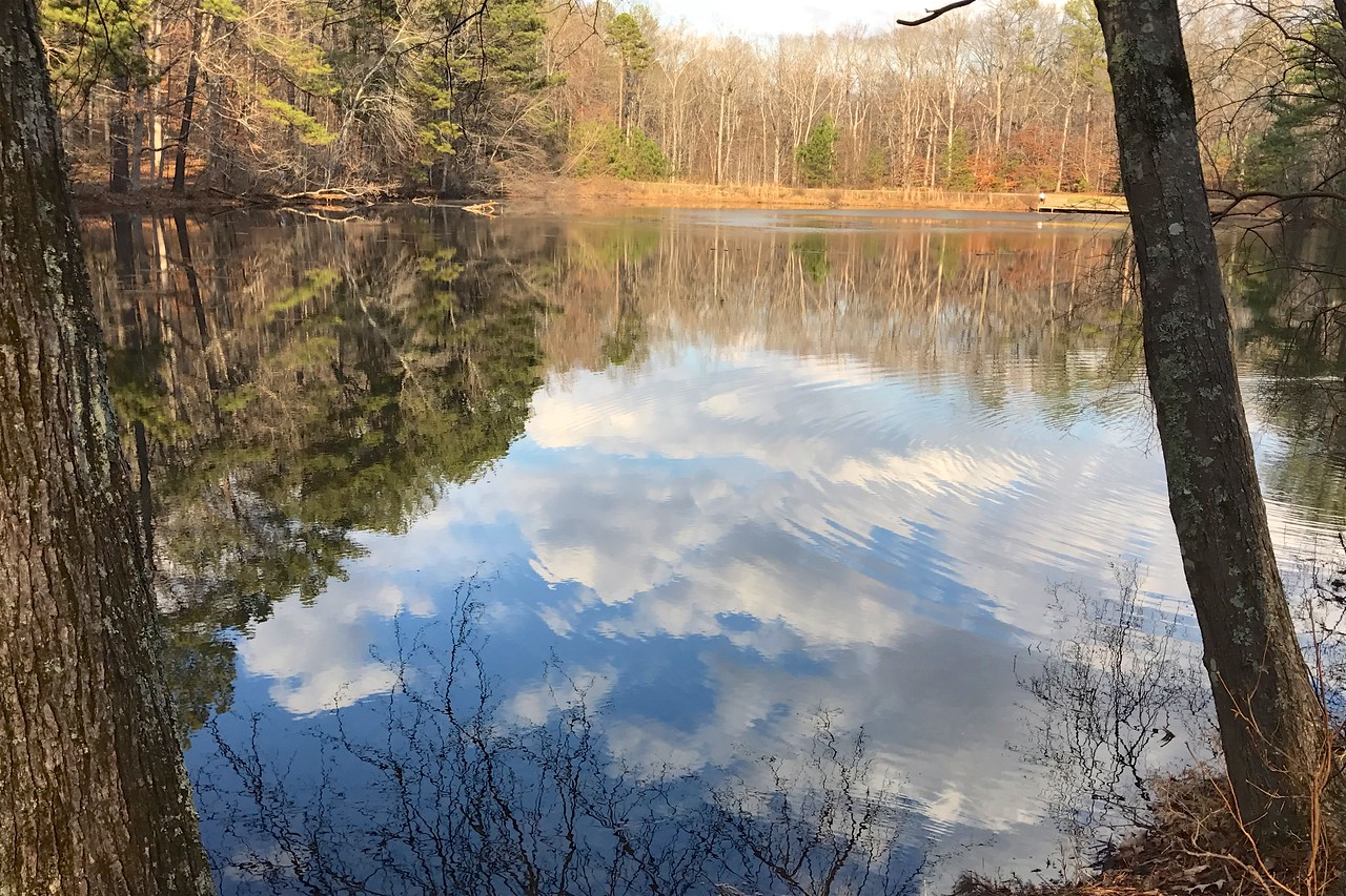 1/15 - Sibley Pond in January
