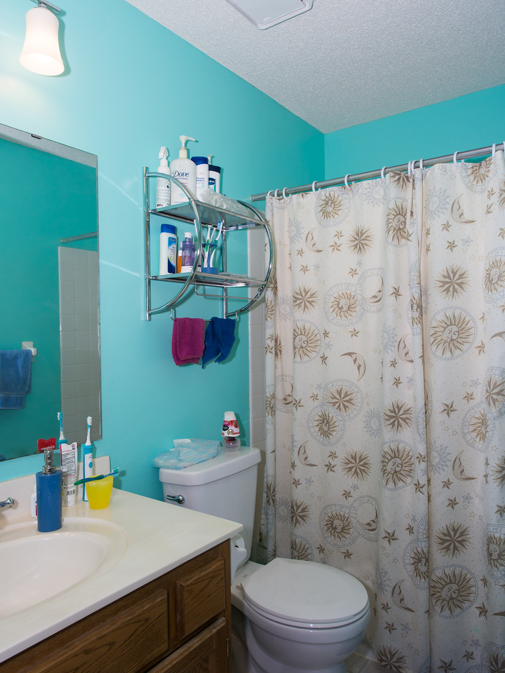 Upstairs bathroom: after (new light fixture, toilet, paint)