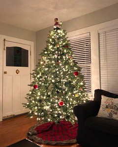 Morgan's Christmas Tree In Their New Home 12/11/18