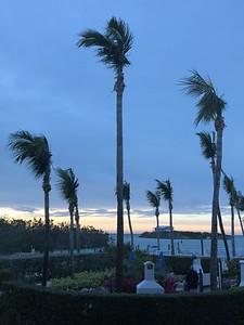 View From Hammocks Resort Marathon Florida Keys January 2018